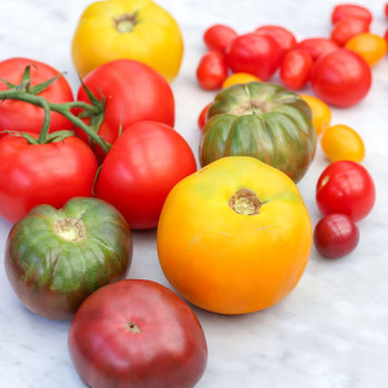 Our Top Five Tomato Recipes