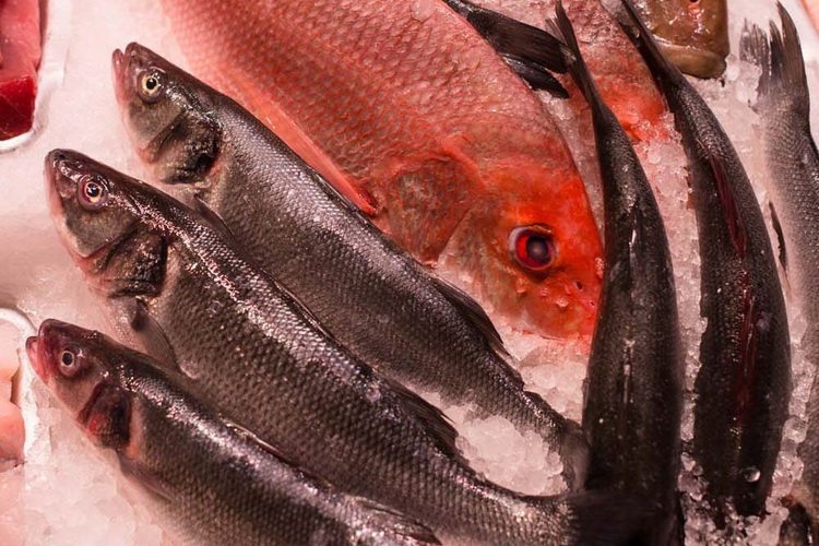 How to Fillet a Cooked Fish