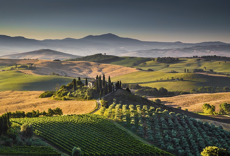 4 Tuscan Wines to Know