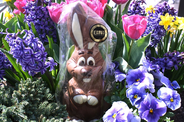 Emvi Chocolate Easter bunny in flowers