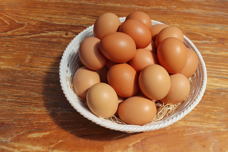 The Difference of Pullet Eggs