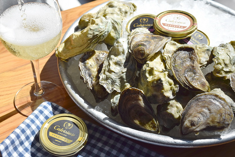 caviar and oysters_03_web