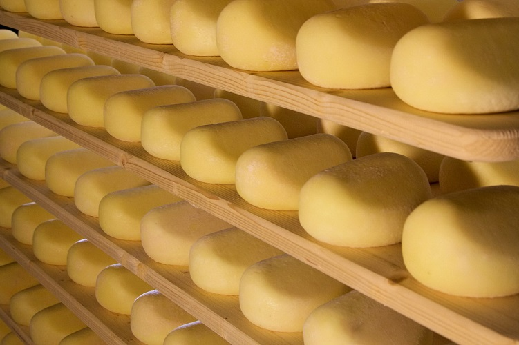 cheese toscana tuscany aging