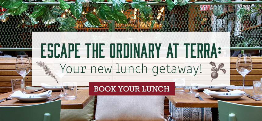 Your New Lunch Getaway