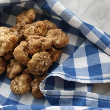 All About White Truffles