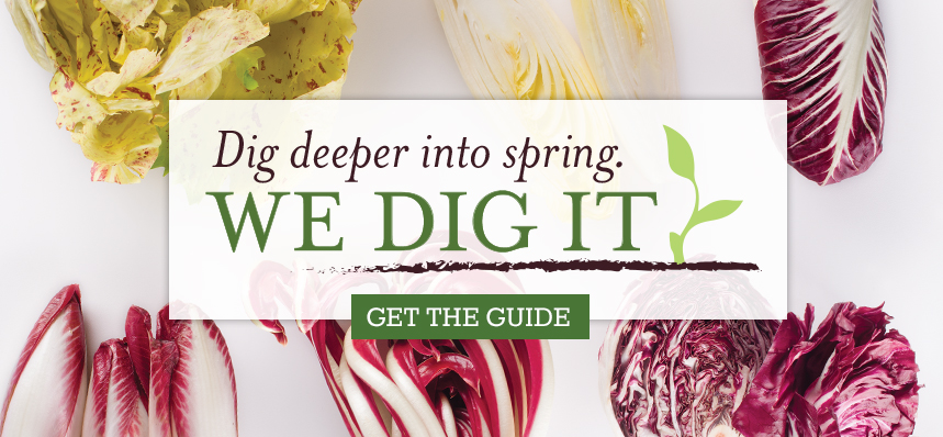 9 Ways to Dig Deeper into Spring