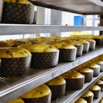 How to Make Panettone: Behind the Scenes at Tommaso Muzzi