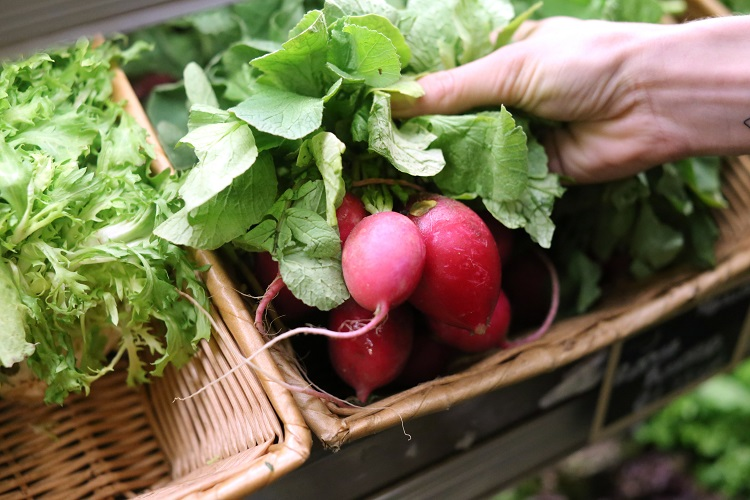 eataly-produce-radishes
