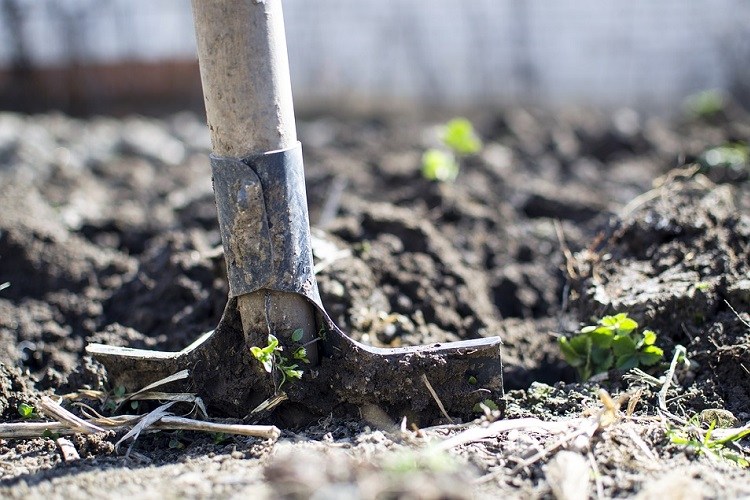 equipment-2047314_960_720-organic-farm-shovel-dirt