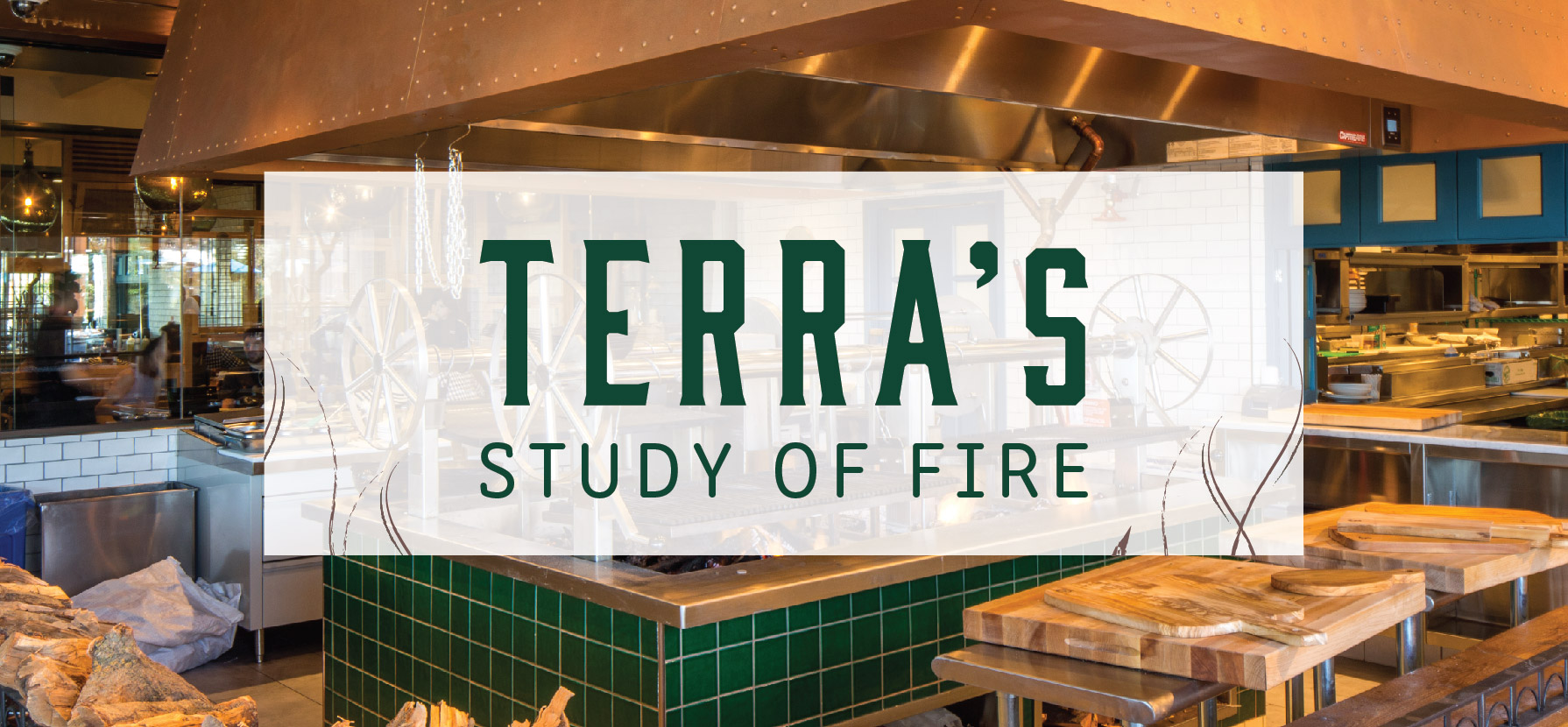 A Study of Fire at Terra
